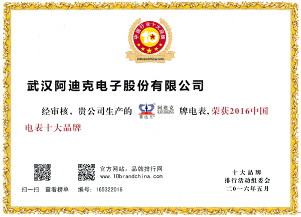 Radarking Won the top 10 brands of Chinese Meters in 2016